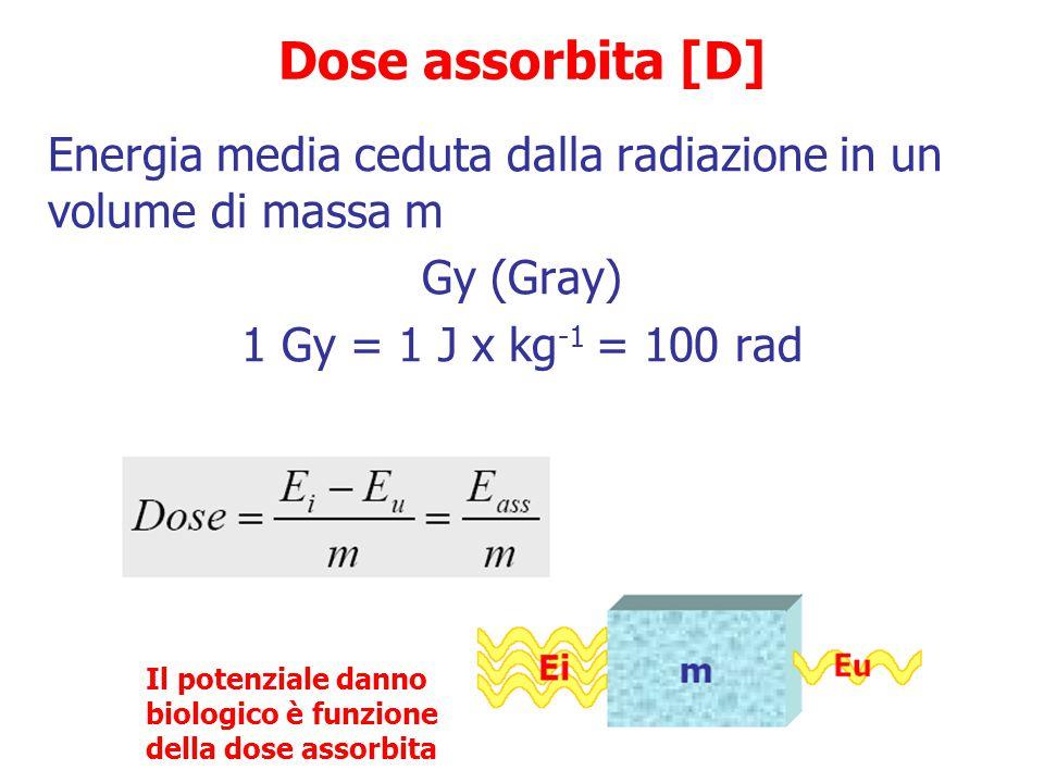 Dose assorbita [D] Energia media ceduta dalla radiazione in un volume di massa m. Gy (Gray) 1 Gy = 1 J x kg-1 = 100 rad.